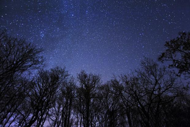 Rêver sous un ciel étoilé