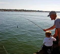 Donner du poisson ou apprendre à pêcher?